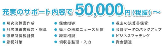 充実のサポート内容で50,000円(税抜)~